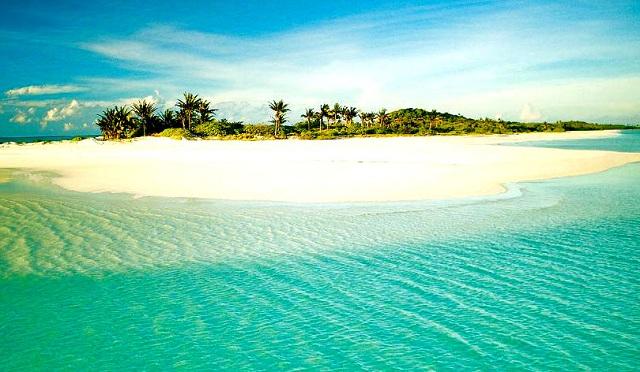 Asia Dive Site | Philippines dive sites :: Cebu : Malapascua Island